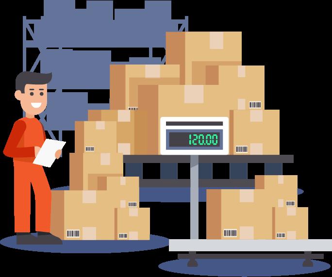 Logistics ERP Software Video Section